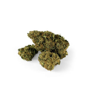 CBD-Flowers-Indoor-therapy